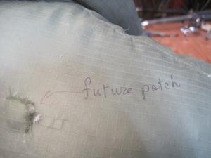 future patch